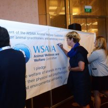 WSAVA 2018-24Sept-518
